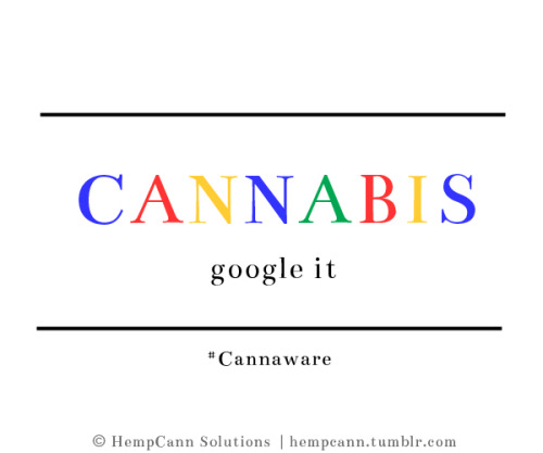 Google and Cannabis: Search and ye shall find