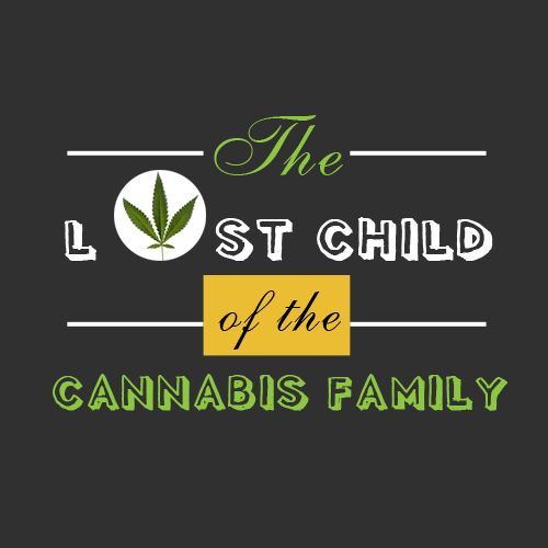 The controversial 'lost child' of the cannabis family