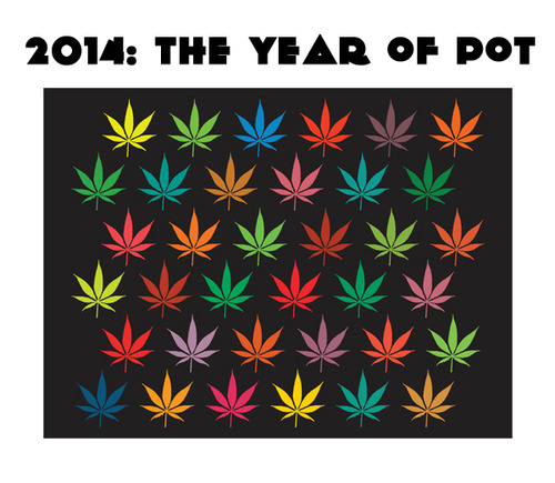 Yes, 2014 was the Year of Pot (and rightly so!)