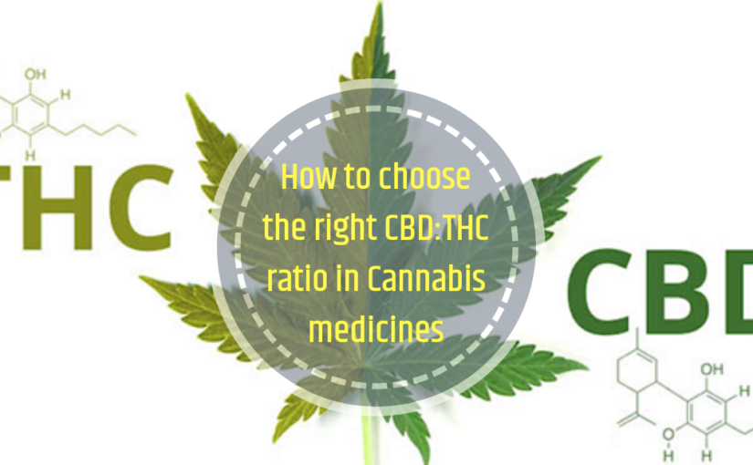 Choosing the right CBD: THC ratio in Cannabis